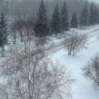 Зима не уступает , пока , дорогу весне ... :: Мила Бовкун