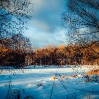 Зимний пейзаж................ :: Александр Селезнев