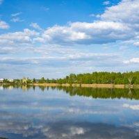 Река :: Валерий Шурмиль