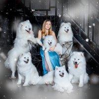 Снежная королева :: Олеся Филиппова