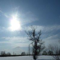 Зимние утро. :: Александр Атаулин