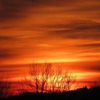 Варенье из заката... ) :: Mariya laimite