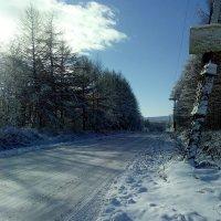Зимняя дорога :: Лариса Брагунец