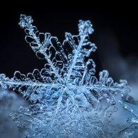 Снежинка 2 :: Сергей Харченко