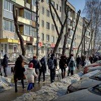 В городе ВЕСНА! :: Владимир Шошин