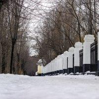 У парка :: Аркадий Баринов