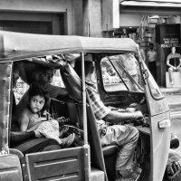 На улицах Шри Ланки. :: Ирина Токарева