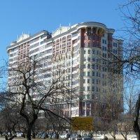 Дом на Мичуринском проспекте. :: константин