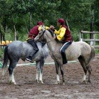 Аударыспак – борьба на лошадях. :: Anna Gornostayeva