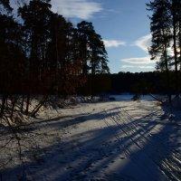 Последние аккорды зимы... :: Ольга Русанова (olg-rusanowa2010)
