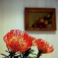 Цветы к женскому празднику :: san05   Александр Савицкий