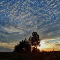 Небо вечернее :: Валентина Пирогова