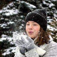 Снег :: Селянка Наталья
