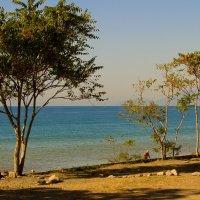 ... самое синее в мире, Чёрное  море моё..! :: barsuk lesnoi
