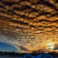 Зимний закат :: Сергей Шаталов