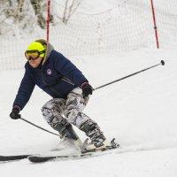 Лыжи :: Валерий Шурмиль