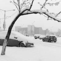 Снежная весна :: Валерий Михмель