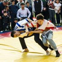 Борьба :: Oleg Sharafutdinov