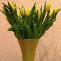 Букет желтых тюльпанов :: Сергей Карачин