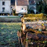 дрова в лучах заходящего солнца :: sergio tachini