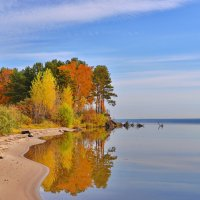 Осень. :: Valeri Verovets