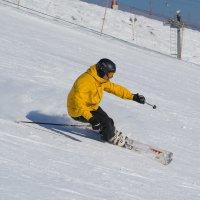 Лыжник :: Валерий Шурмиль