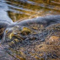 ...вода камень точит ..... :: Va-Dim ...