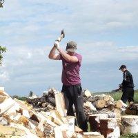 Заготовка дров :: Светлана Рябова-Шатунова