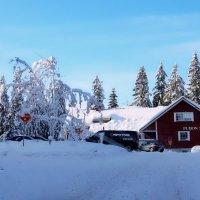 Зима в Suoml :: Сергей Беличев
