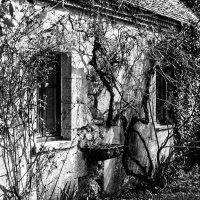 Le Sallay гостевой домик :: sergio tachini
