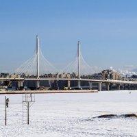 Мост :: Вера Щукина
