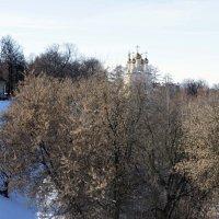 Вид на Кремль в Рязани :: Irina Shtukmaster