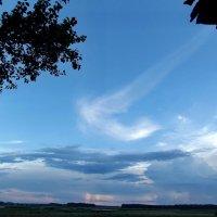 Ангел летает перед моим домом :: Светлана Рябова-Шатунова
