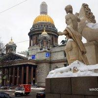 Мой Петербург :: Olga