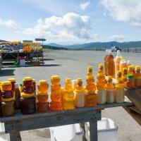 Торговля медом на Семинском перевале :: Валерий Михмель