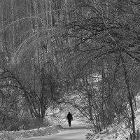 Одинокий путник :: Екатерина Торганская