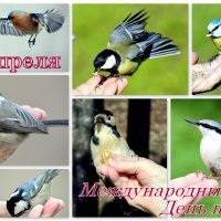 С Днём птиц! :: Сергей