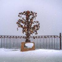 Зимой и летом... :: Олег Архипов
