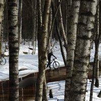 велотропы :: sv.kaschuk