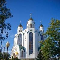Собор Христа Спасителя, Калининград :: Ирина Kачевская