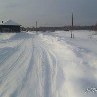 Зима в деревне :: Elena Wise