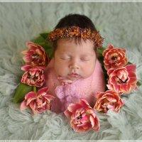 Весна :: Юлия Слободскова