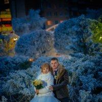 Зимняя свадьба в Курске :: Алексей Костюнин