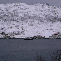 Норвегия :: Mari Kush