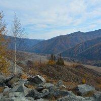 Восточная сторона перевала Чике-Таман. :: Валерий Медведев