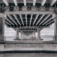 Frames. :: Андрий Майковский