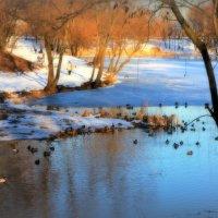 Ещё один весенне-зимний пейзаж :: Валентина Данилова