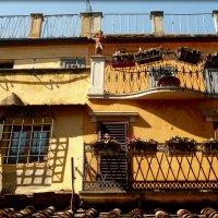 Золотой мост Понте Веккьо во Флоренции :: Galina Belugina