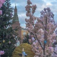 Весна на Манежной :: Александра