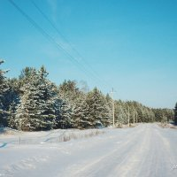 Зимняя дорога :: Elena Wise